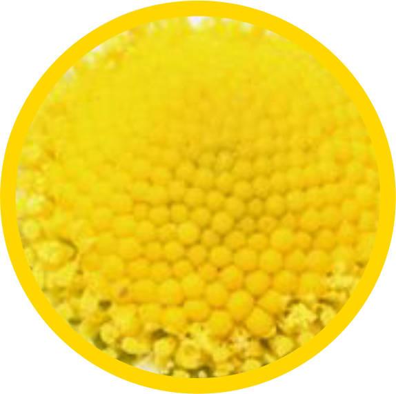 13romahka (574x571, 40Kb)