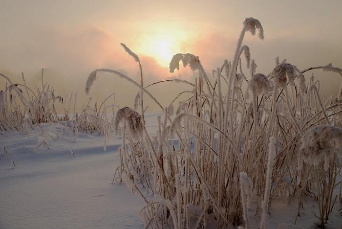 Песня лето осень и зима