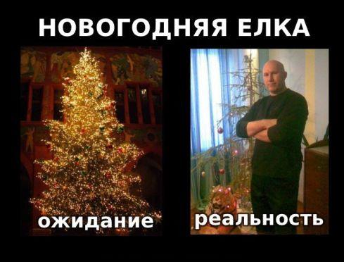 мороз приколы: