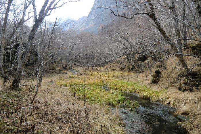 Чанбайшань – биосферный заповедник Китая 93971