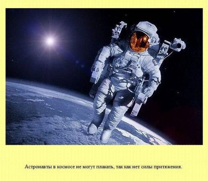 fakti_12 (700x607, 82Kb)