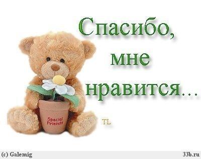 0_59436_b5678dca_L (400x316, 24Kb)