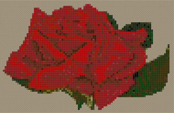 roza (600x391, 222Kb)