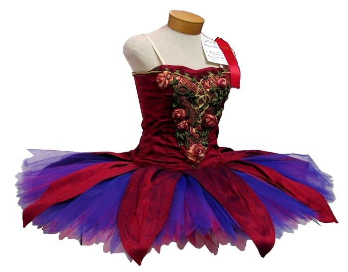 Colourful_ballet_tutu (700x547, 158Kb)