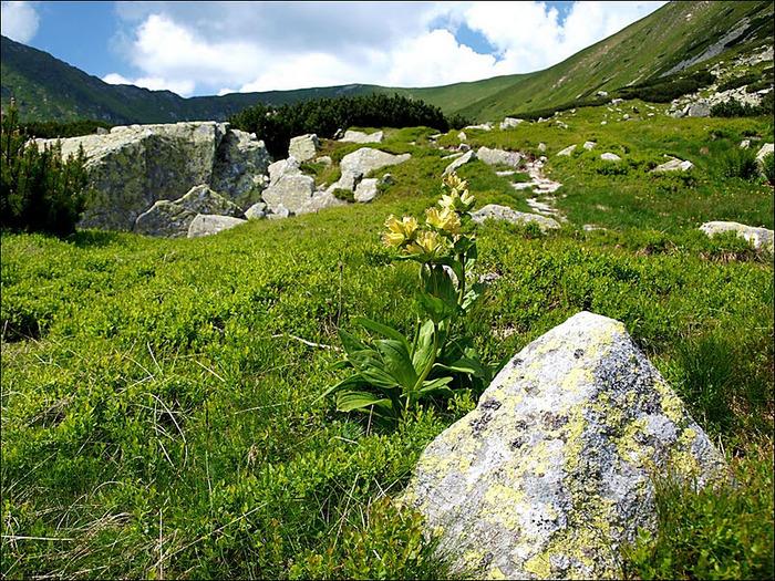 Природа - Татры 91826