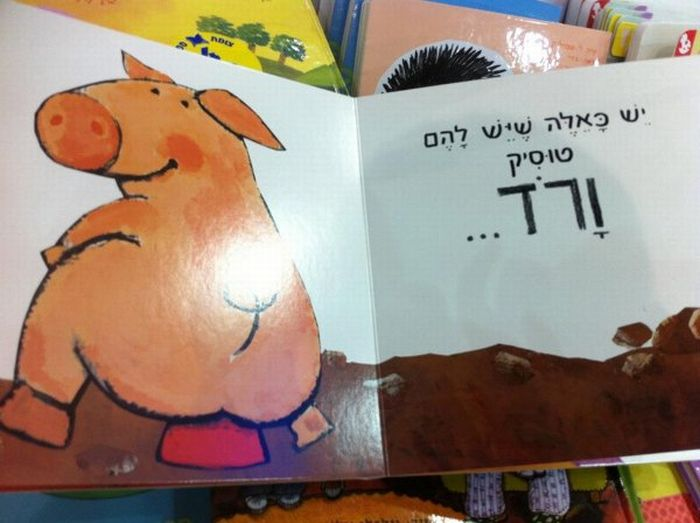 book_030 (700x523, 48Kb)