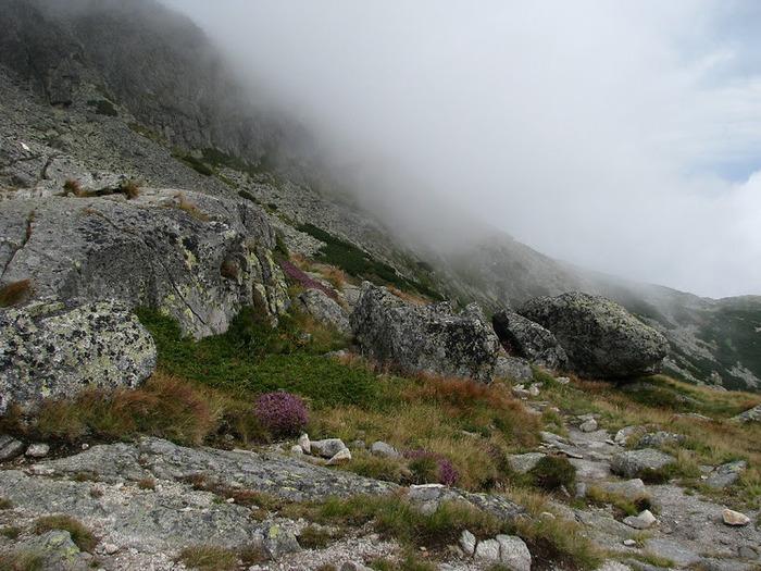 Природа - Татры 34999