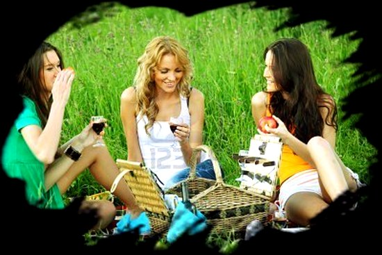 6317539-girlfriends-on-picnic-in-green-grass (550x367, 54Kb)