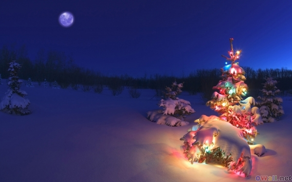 2222299_thumb3_christmas_night_3 (600x375, 130Kb)