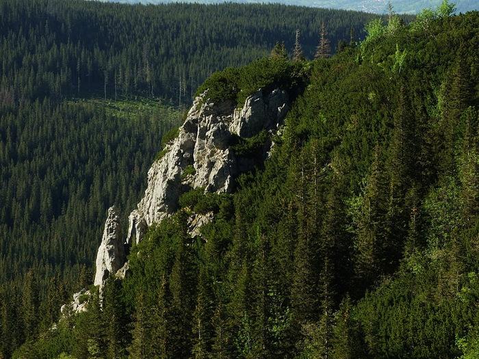 Природа - Татры 75666