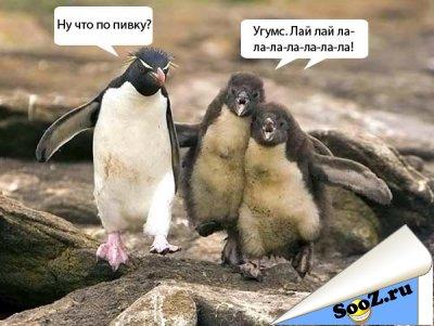 1298154801_Pozitivnaya_fotopodborka_9 (400x301, 33Kb)