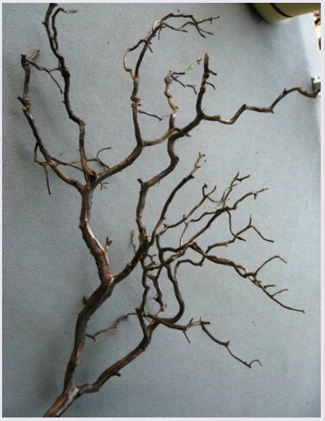 Поделки для дачи из дерева и веток