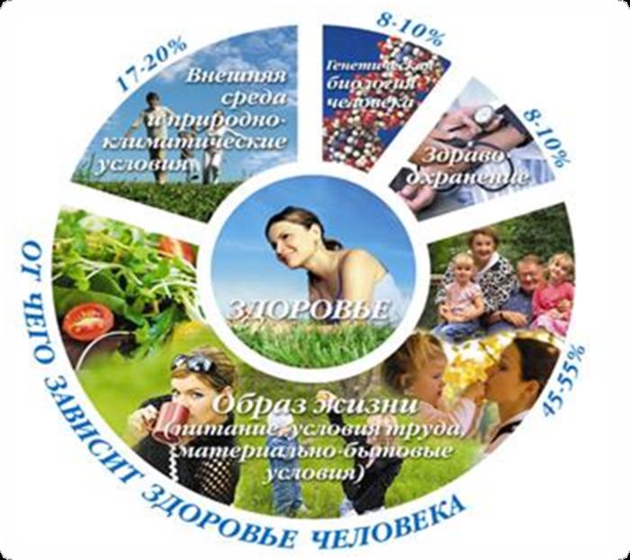Здоровье (560x483, 617Kb)