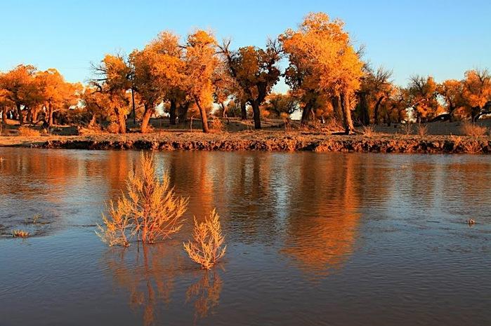 Геологический парк пустыни Алашань 79621