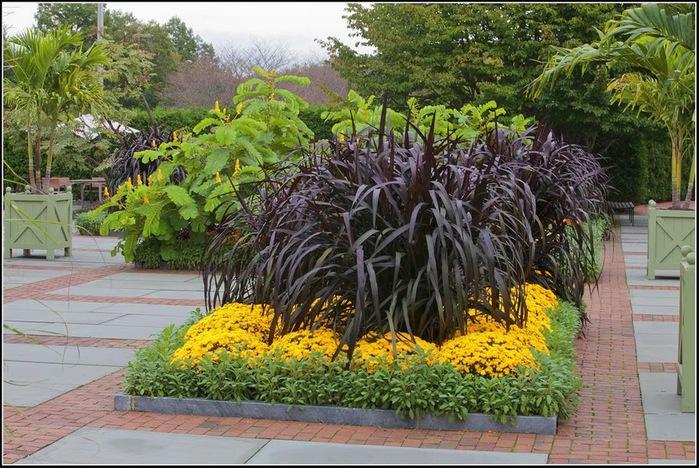 Сады Лонгвуда, Пенсильвания, США. 37286