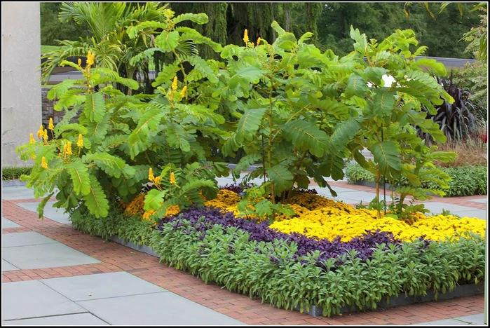 Сады Лонгвуда, Пенсильвания, США. 66923