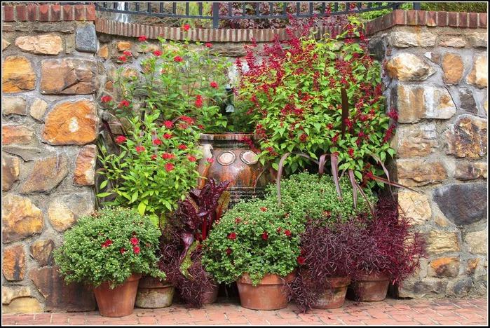 Сады Лонгвуда, Пенсильвания, США. 99532