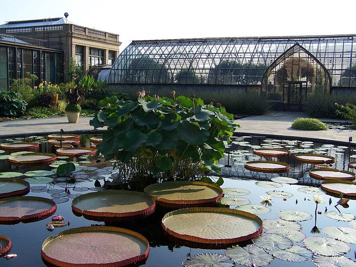 Сады Лонгвуда, Пенсильвания, США. 95503