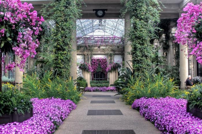 Сады Лонгвуда, Пенсильвания, США. 43573