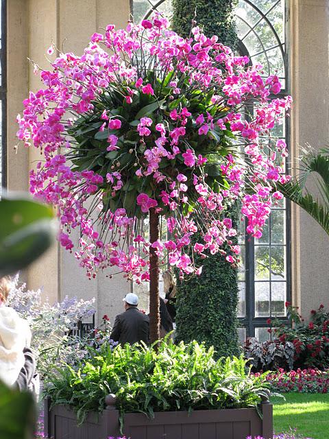 Сады Лонгвуда, Пенсильвания, США. 28238
