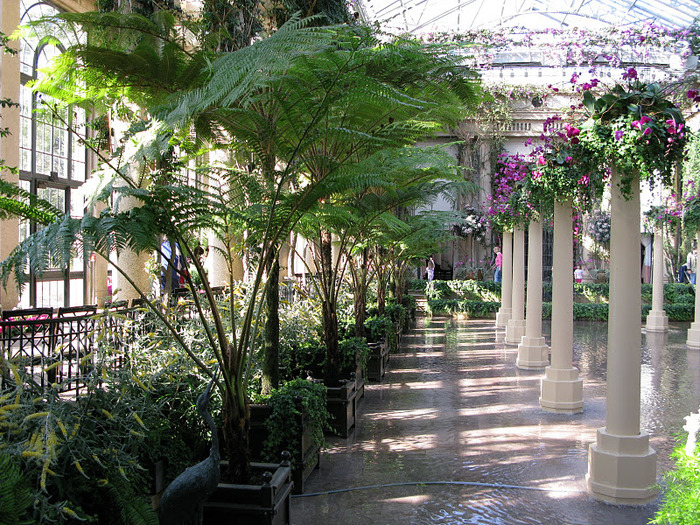 Сады Лонгвуда, Пенсильвания, США. 39423