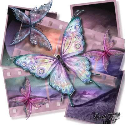 butterfly (400x400, 34Kb)