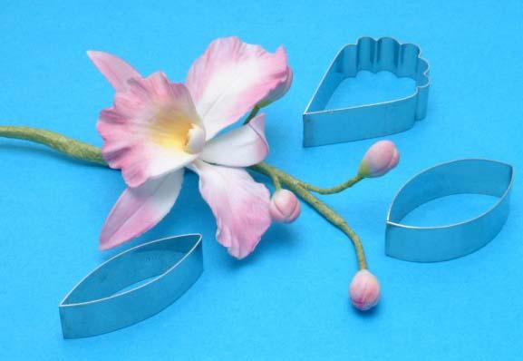 Как сделать орхидею каттлею