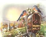 Превью Birds (600x482, 96Kb)