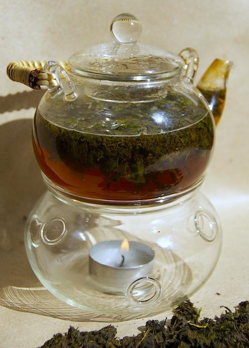 копорский чай (501x700, 101Kb)