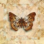 Превью borboleta_leopardo1 (500x500, 87Kb)