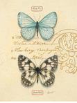 Превью chad-barrett-duet-papillon (334x450, 49Kb)