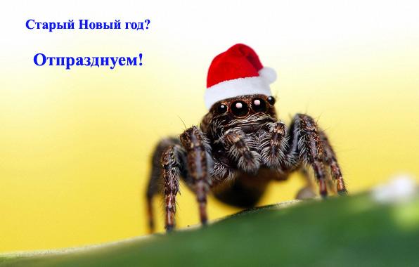 Старый Новый год/4348076_2Pyatnica (596x380, 61Kb)