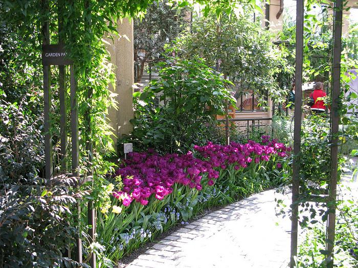 Сады Лонгвуда, Пенсильвания, США. 18008