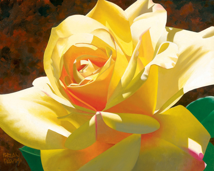 0-16-Golden_Solo_Rose[1] (700x560, 126Kb)