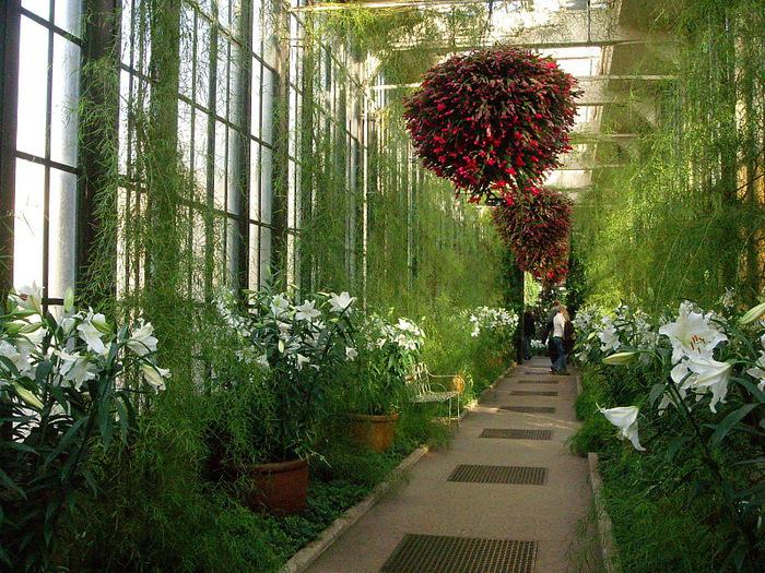 Сады Лонгвуда, Пенсильвания, США. 10586