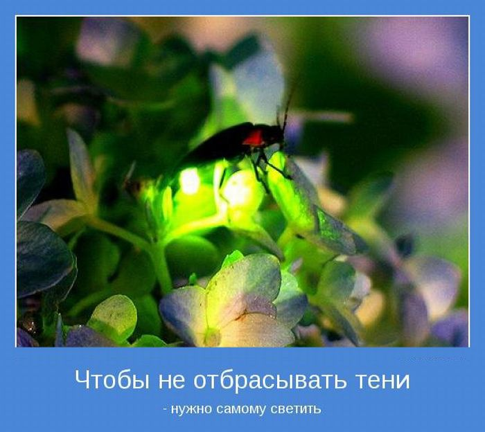 3422701_1326231458_motivatory_24 (700x624, 77Kb)