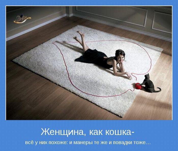 3422701_1326231549_motivatory_03 (700x592, 85Kb)