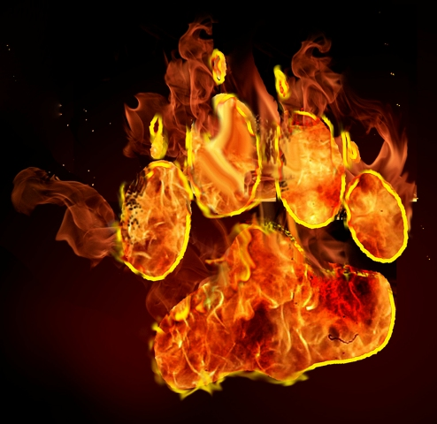 Рисунки огнем 20 (494x480, 144Kb)