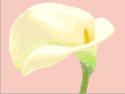 3937664_flower (400x301, 17Kb)