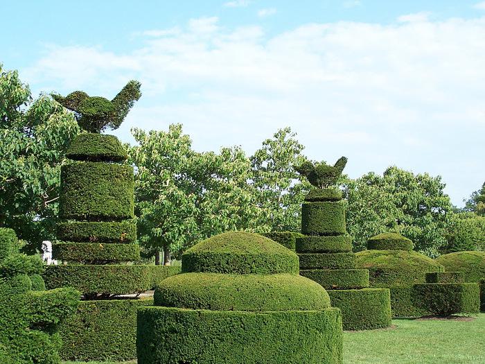 Сады Лонгвуда, Пенсильвания, США. 99865