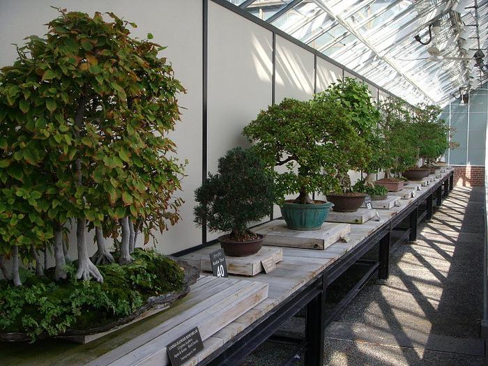 Сады Лонгвуда, Пенсильвания, США. 58337