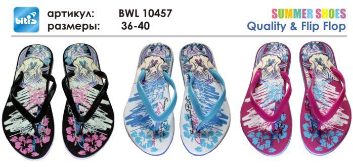 BWL 10457 (700x331, 310Kb)