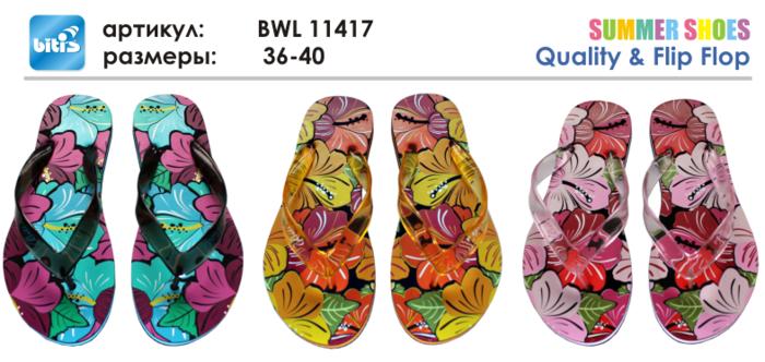 BWL 11417 (700x332, 304Kb)