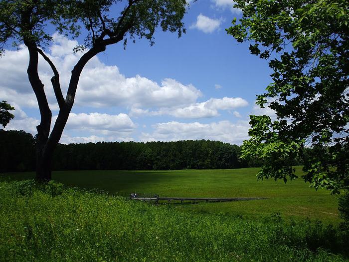 Сады Лонгвуда, Пенсильвания, США. 48183