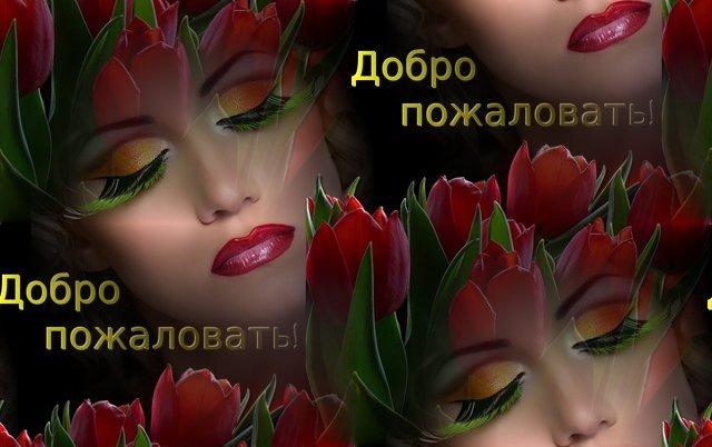 4112254_af4bbae83645 (640x402, 46Kb)