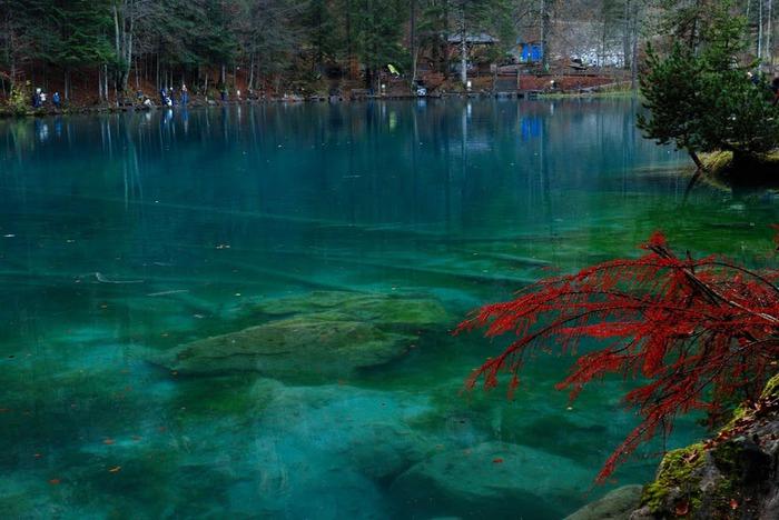 На холодно-синем стекле воды - Blausee 74286