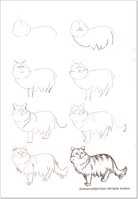 cat00015 (483x700, 113Kb)