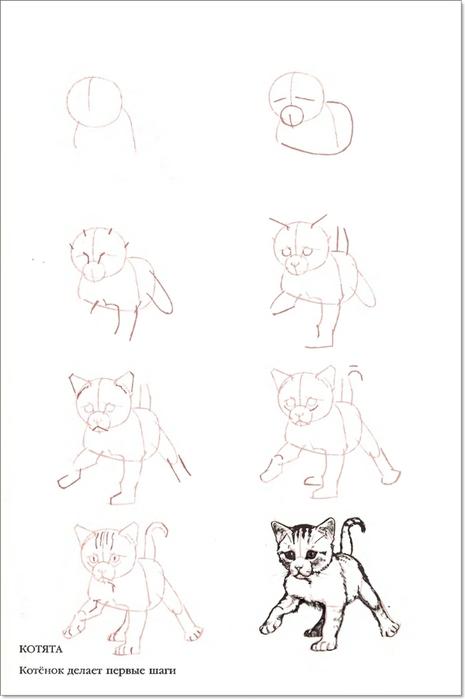 cat00040 (465x700, 95Kb)