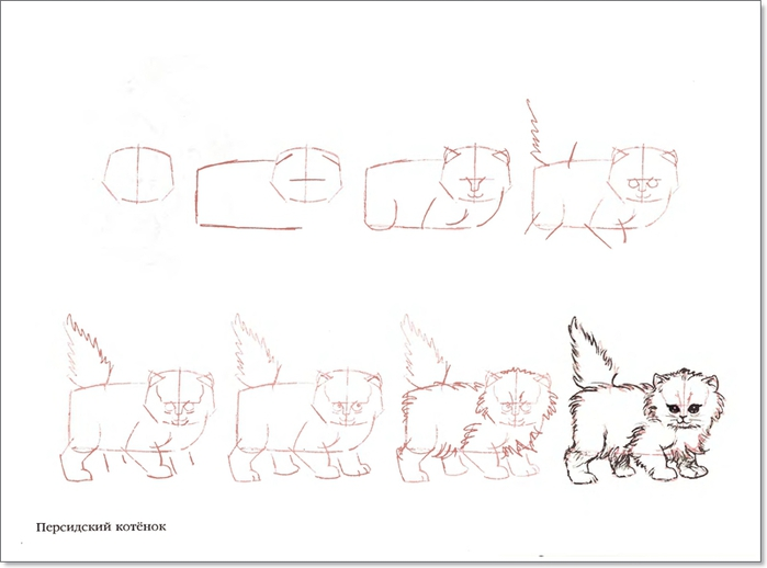 cat00045 (700x518, 111Kb)