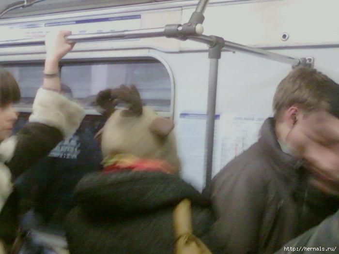 девушка в шапке с рогами лося